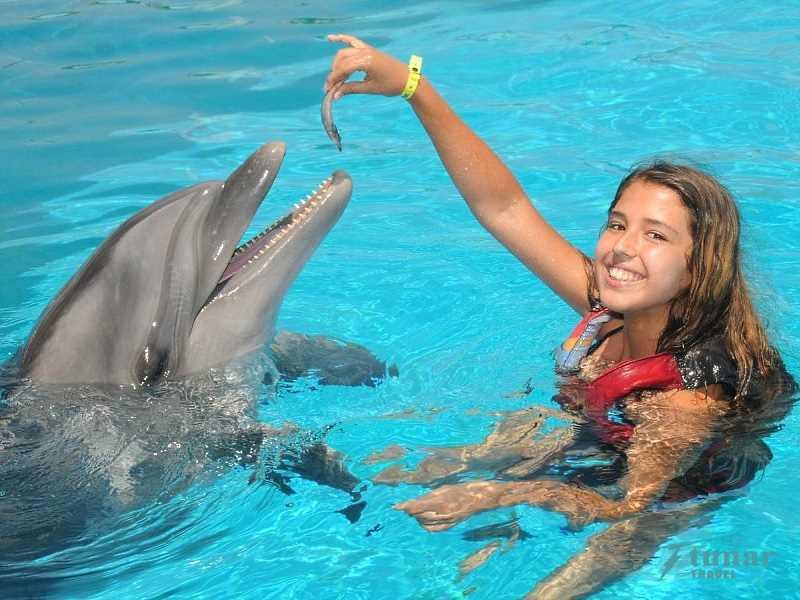 Плавание с дельфинами в «AKSU» в Анталии